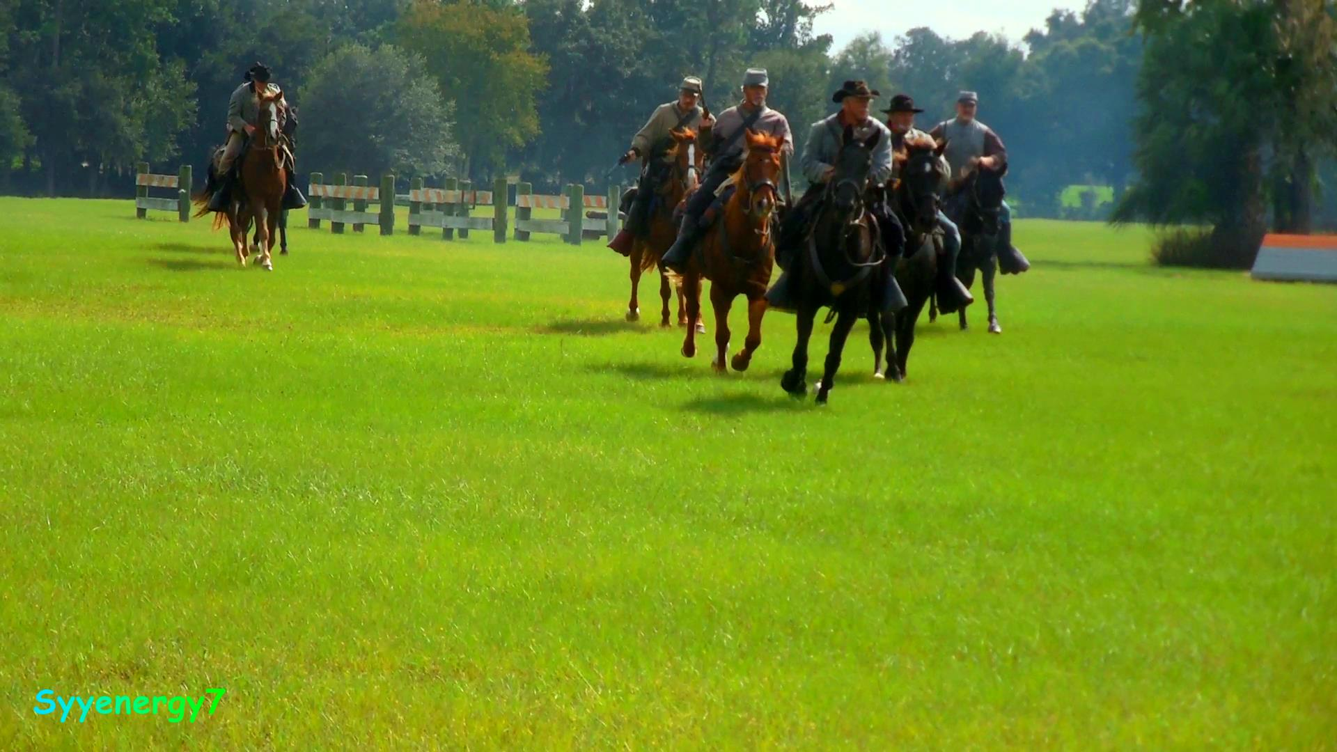 Ocklawaha River Raid 2019 horses